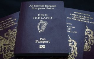 becoming a citizen of ireland